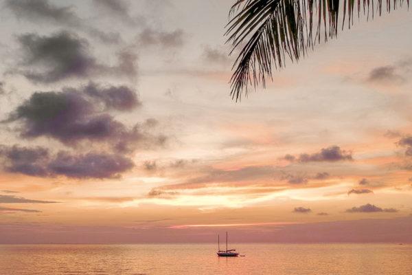 That Island Life